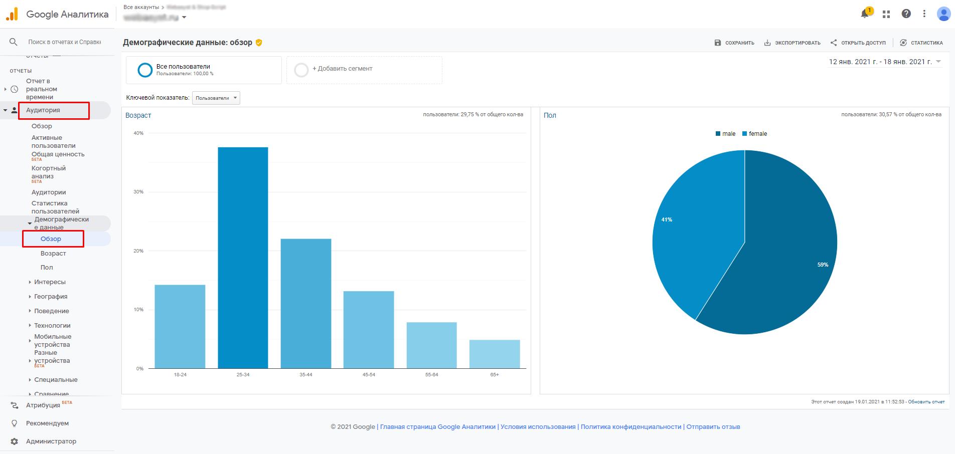 Отчет по демографическим данным Google Analytics